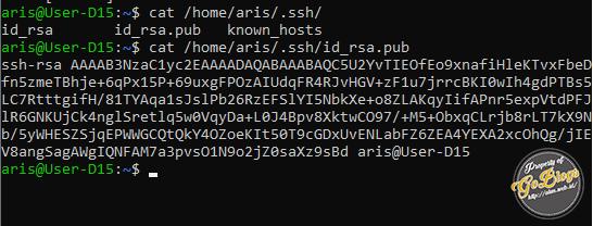 SSH Ubuntu Server goblogs